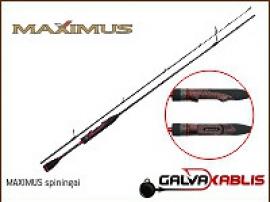 MAXIMUS_spininga_5c5195549bad7