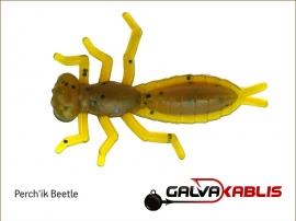 Perchik Beetle